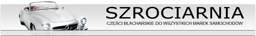 /szrociarnia-pl/aLLEGRO--2008--10--25.jpg